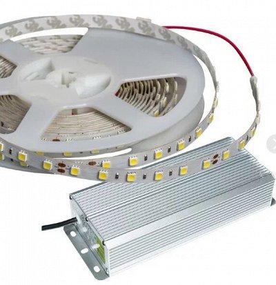Лампы для Увеличения Яйценоскости! 🐤 Для роста и развития! — Блоки питания светодиодов — Электротовары