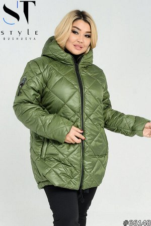 Куртка 66148