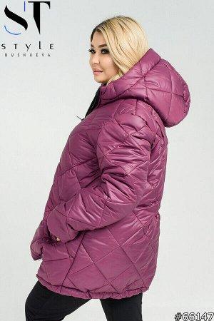 Куртка 66147