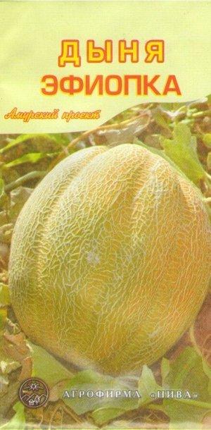 Дыня Эфиопка АП