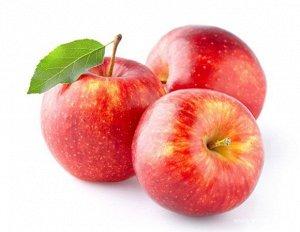 Яблоки сублимационной сушки, КУСОЧКИ , 100 гр
