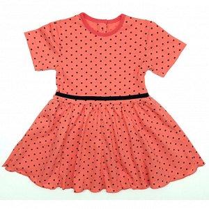 Платье 7028/9 (коралл, горох)