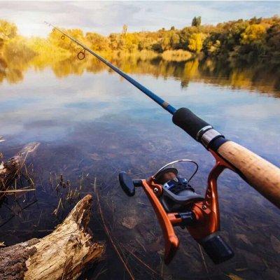 Домашний уют и комфорт💒 Распродажа ковровых дорожек — Рыбалка — Все для рыбалки