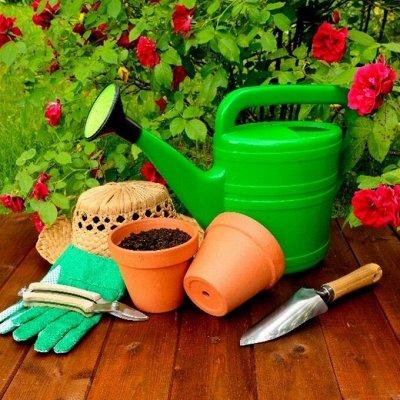 Домашний уют и комфорт💒 Распродажа ковровых дорожек — Садовый инвентарь — Сад и огород
