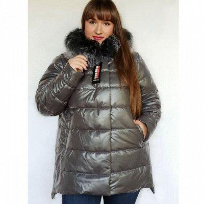 PAG@ и J@DI- с 44 по 70 р.Куртки+одежда+мужское ! Акция !  — Зимняя верхняя одежда Maria — Пуховики