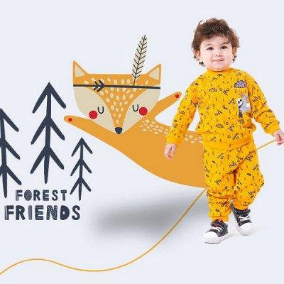 CHERUBINO детский трикотаж ! Возвращение любимого бренда! 👍 — Ясельки мальчики — Боди и песочники