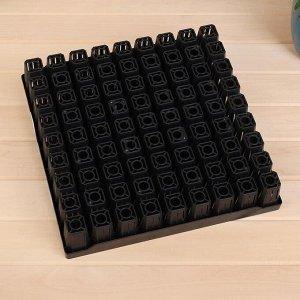 Кассета для хвойных, 81 ячейка, 85 мл, ячейка 4,1 ? 4,1 ? 7,3 см, Greengo