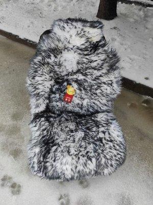 Накидка меховая овчина (натуральный мех, длинный ворс) без подклада  Белый с черными кончиками