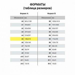 Карманы информационные самоклеящиеся PS-T, А5, горизонтальные, КОМПЛЕКТ 10 шт., ПЭТ, толщина 0,3 мм, 171882