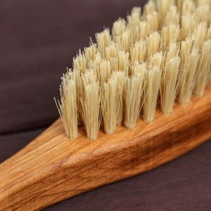 Щётка с ручкой, 55 пучков, натуральный волос