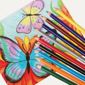 """Карандаши цветные ПИФАГОР """"ЖИРАФ"""", 36 цветов, пластиковые, классические заточенные, 181332"""