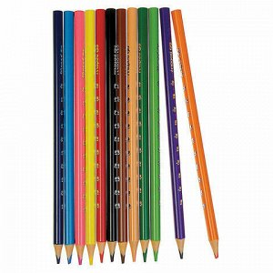 """Карандаши цветные MAPED (Франция) """"Pulse"""", 12 цветов, пластиковые, трехгранные, заточенные, европодвес, 862252"""