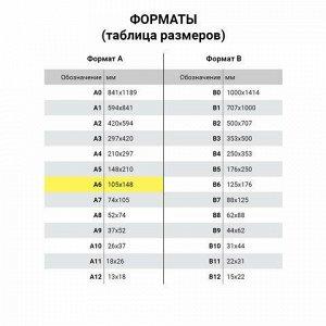Карманы информационные самоклеящиеся PS-T, А6, горизонтальные, КОМПЛЕКТ 10 шт., ПЭТ, толщина 0,3 мм, 171881