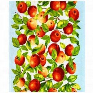 """Полотенце кухонное вафельное 50х60см """"Яблочки"""", 176гр/м2 (Ро"""