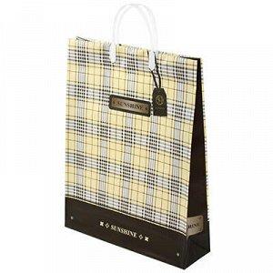 Пакет подарочный мягкий пластик с пластиковой ручкой 32х42х1