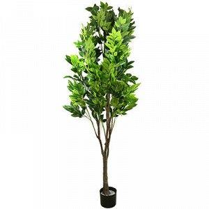 """Декоративное дерево """"Кофейное дерево"""" 200см, в пластмассовом"""