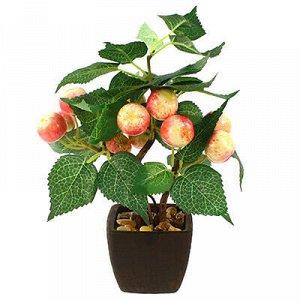 """Декоративное дерево """"Райское яблочко"""" h26см в горшке 7,5х7,5"""