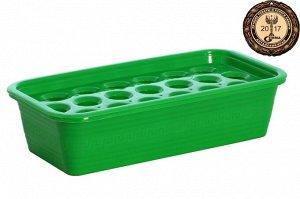 Ящик с лотком для выращивания лука (19 ячеек)