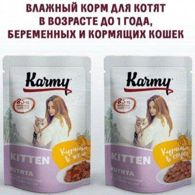 Karmy - корм для собак и кошек премиум класса! №34 — НОВИНКА - Karmy влажный корм для котят и беременных кошек — Корма