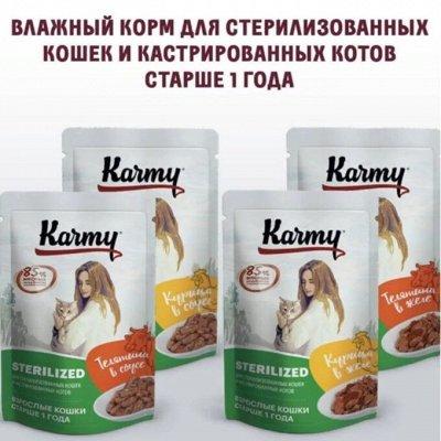 Karmy - корм для собак и кошек премиум класса! №34 — НОВИНКА-Karmy влажный корм для стерил. и кастрир.животных — Корма