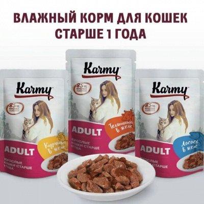 Karmy - корм для собак и кошек премиум класса! №34 — НОВИНКА -  Karmy влажный корм для кошек и котов  от года — Корма