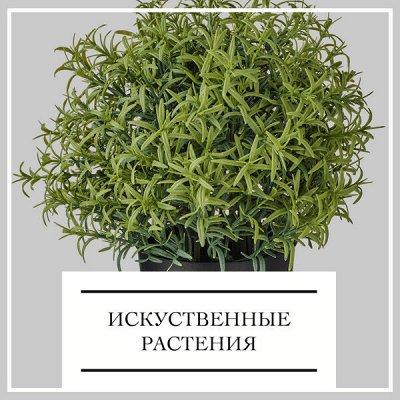ДОМАШНИЙ ТЕКСТИЛЬ! Ликвидация! Крупные скидки! До - 89% ⛔ — Искусственные растения — Комнатные растения и уход