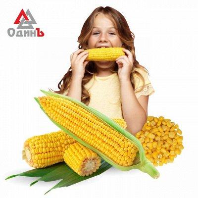 Крабовое мясо в подарок — Замороженная сахарная кукуруза 69р — Овощные