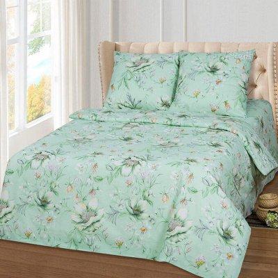 ECOLAN — домашний текстиль, яркие принты! Наматрасники — Постельное белье (бязь) - семейный — Семейные комплекты