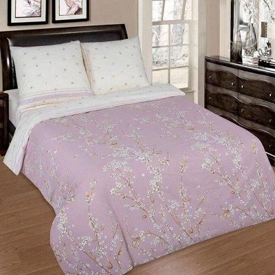 ECOLAN — домашний текстиль, яркие принты! Наматрасники — Постельное белье (поплин) - 2сп — Постельное белье