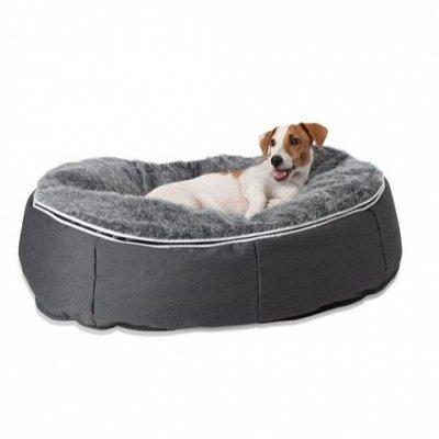 Бескаркасная Мебель + наполнитель для нее. Успей! — Мебель LUX - Лаунж подушка для любимцев — Для собак