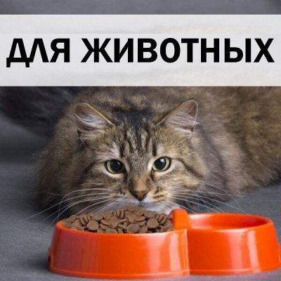 ХЛОПОТУН: для био- и торфяных туалетов! — Для животных — Пластмассовая посуда