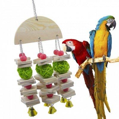 Для животных. Много новинок: корма, наполнители, лакомства — Игрушки для птиц — Кормушки и поилки