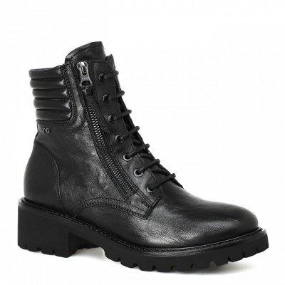 Итальянские кроссовки Nero Giardini — Весенние ботинки — Кроссовки