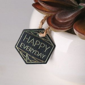 Суккулент в керамическом горшочке Happy everyday. 7 ? 7.5 ? 7.5 см