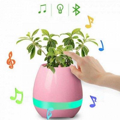 Удобная закупка. Все в одном месте, швабры, канц.товары .... — Умный музыкальный горшок для цветов — Семена многолетние