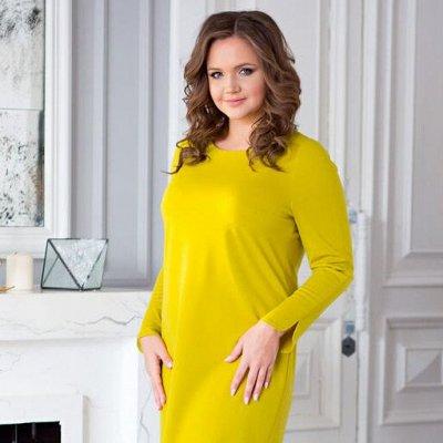 Платья, свитшоты, брюки Svetozara! Новинки! Распродажа! — Женская одежда больших размеров (с 50) — Большие размеры