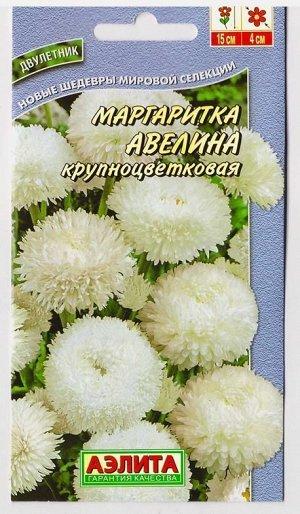 Маргаритка Авелина (Код: 9440)