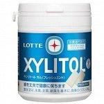 Резинка жевательная Xylitol Gum Fresh mint Bottle освежающая мята, Lotte, 143г