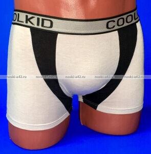 Детские трусы-боксеры для мальчиков COOL KID арт. 6904 (6903)