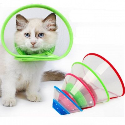 😺Ушки, лапки, хвостики. Популярная закупка для любимцев  — Защитные воротники для кошек и собак — Уход