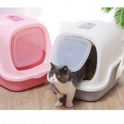 😺Ушки, лапки, хвостики. Популярная закупка для любимцев — Туалет-домик для кошек — Туалеты и наполнители