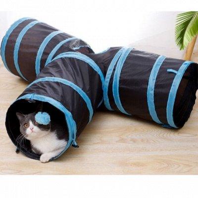 😺Ушки, лапки, хвостики. Популярная закупка для любимцев  — Игровой тоннель для кошек — Игрушки
