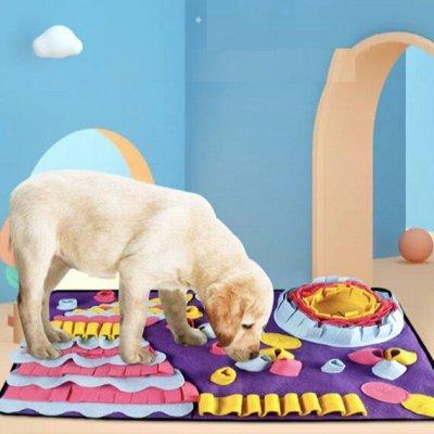 😺Ушки, лапки, хвостики. Популярная закупка для любимцев  — Развивающие коврики для собак. Для любого возраста! — Игрушки