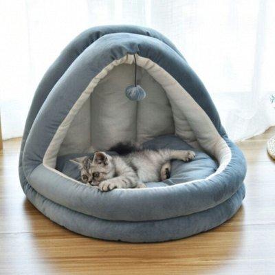 😺Ушки, лапки, хвостики. Популярная закупка для любимцев  — Домики для котов и собак — Домики