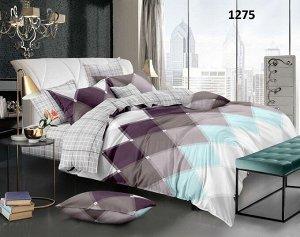 Комплект 2 спальный с Европростыней БЕЗ комбинирования