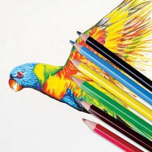 """Карандаши цветные ПИФАГОР """"БЫСТРЕЕ! ВЫШЕ! СИЛЬНЕЕ!"""", 6 цветов., классические заточенные, 181355"""