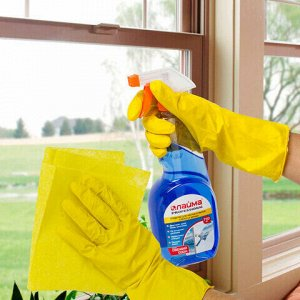 Средство для мытья стекол и зеркал 750 мл, ЛАЙМА PROFESSIONAL, распылитель, 602301