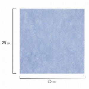 Салфетки универсальные, 25х25 см, КОМПЛЕКТ 5 шт., 60 г/м2, вискоза (ИПП), голубые, ЛЮБАША, 605501