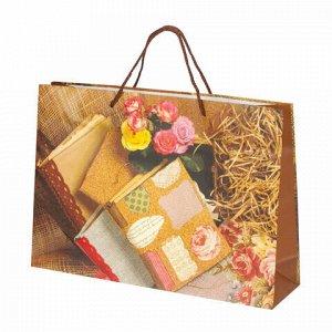 """Пакет подарочный ламинированный, 38x27x10 см, """"Книги"""""""