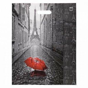 """Пакет с вырубной ручкой ПВД, 45х38 см, """"Мой Париж"""", 60 мкм, н00084575"""